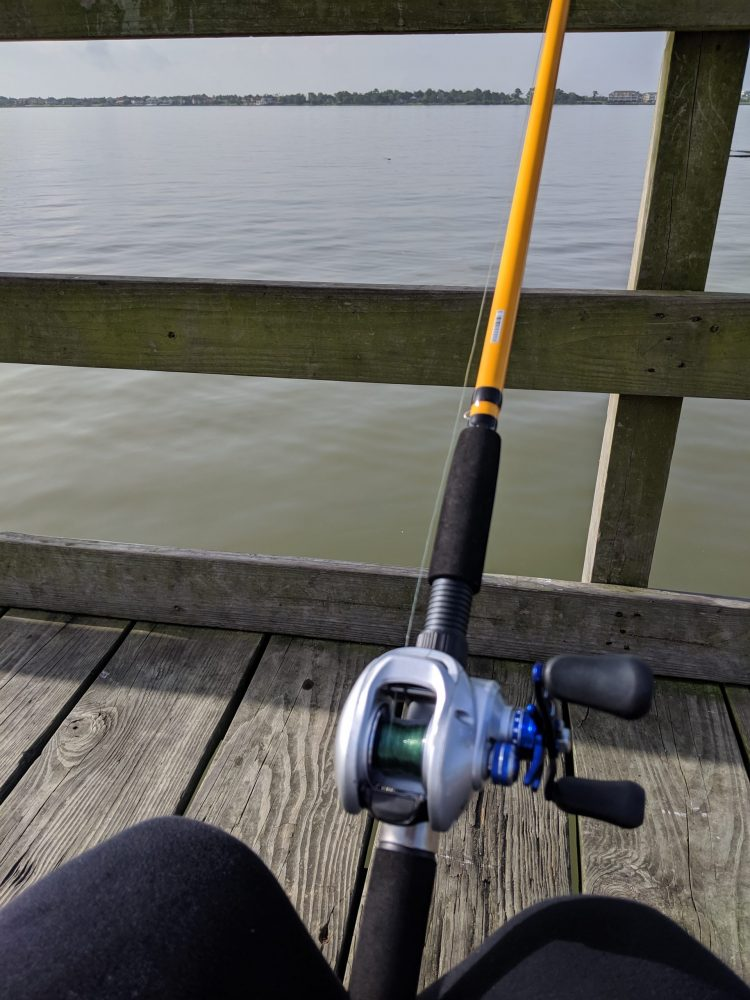 fishing pole on the lake