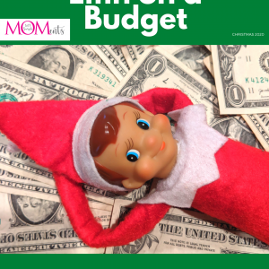 Elfin on a Budget Ebook Cover